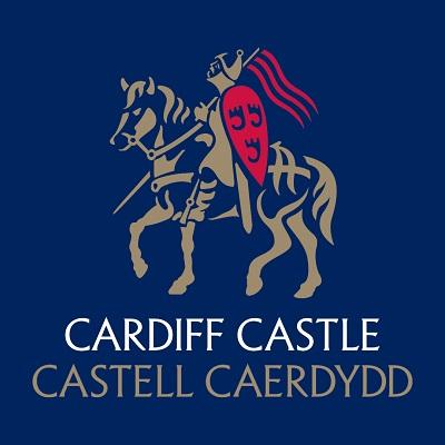 Castle-Logo-on-Blue